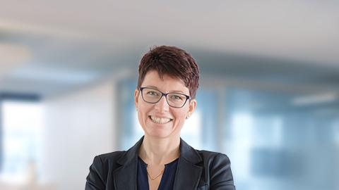 Signal Iduna Hofmann Stecher