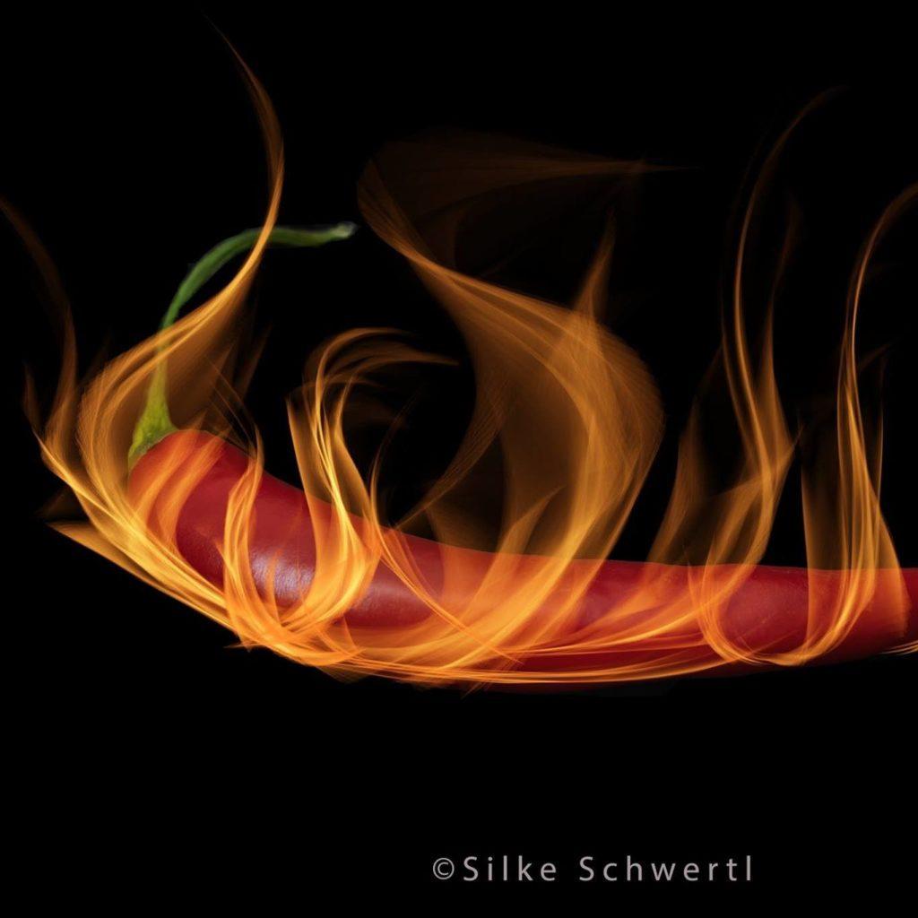 Firechili Logo